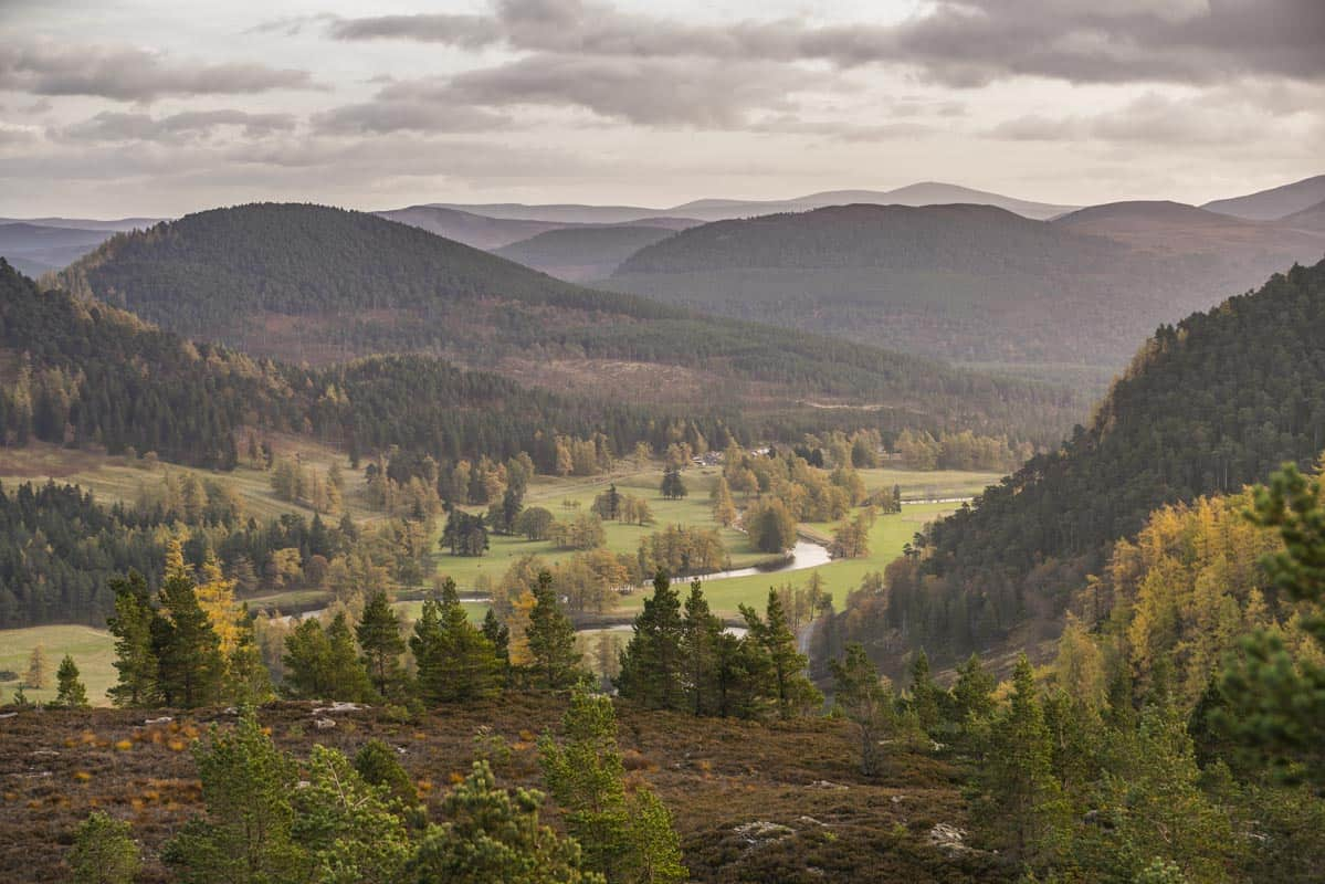 The Cairngorms National Park is one of the most beautiful in Europe.