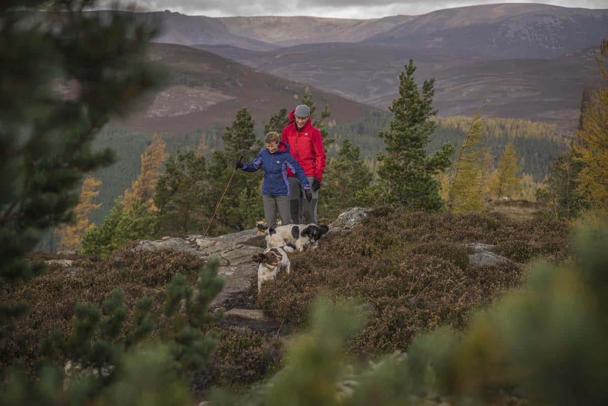 Hiking in the Cairngorms National Park